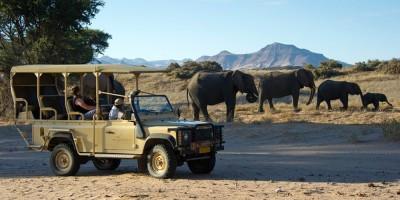 signature african safaris